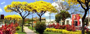 Sucursal Santa Cruz